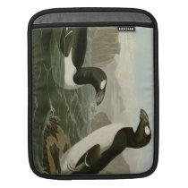 Great Auk iPad Sleeve