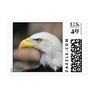 Great Bald Eagle Postage