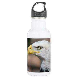 Great Bald Eagle Stainless Steel Water Bottle