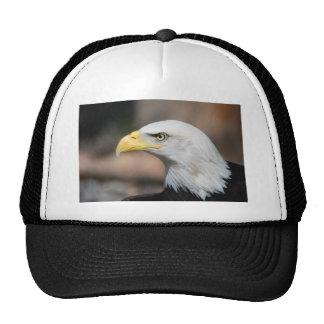 Great Bald Eagle Trucker Hat