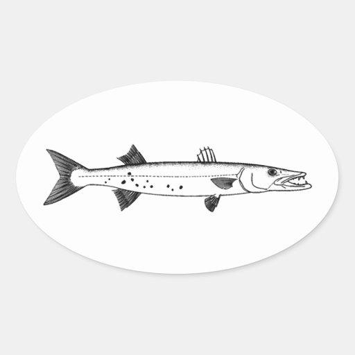 Great Barracuda Logo Oval Sticker