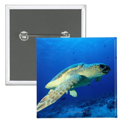 Great Barrier Reef, Australia 2 2 Inch Square Button