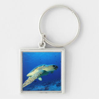 Great Barrier Reef, Australia 2 Keychain