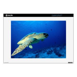 Great Barrier Reef, Australia 2 Laptop Decals