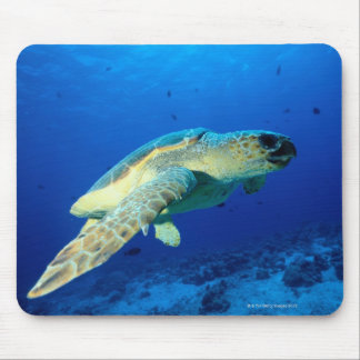 Great Barrier Reef, Australia 2 Mouse Pad