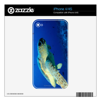 Great Barrier Reef, Australia 2 Skin For The iPhone 4