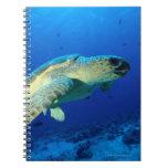 Great Barrier Reef, Australia 2 Spiral Notebook