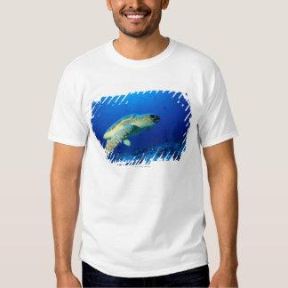 Great Barrier Reef, Australia 2 T-Shirt