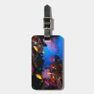 Great Barrier Reef Luggage Tag