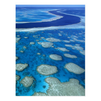 Great Barrier Reef Marine Park Queensland AU Postcard