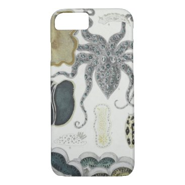 Great Barrier Reef Moluscs, iPhone Case