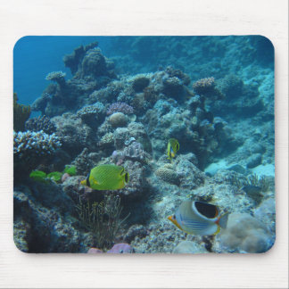 Great Barrier Reef Mouse Pad