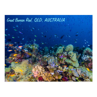 Great Barrier Reef Postcard