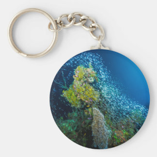 Great Barrier Reef Tropical Fish Coral Sea Basic Round Button Keychain