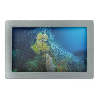 Great Barrier Reef Tropical Fish Coral Sea Belt Buckle