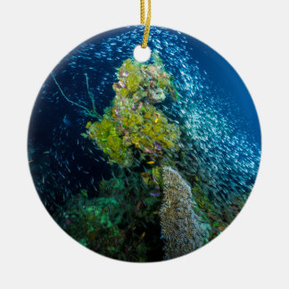 Great Barrier Reef Tropical Fish Coral Sea Ceramic Ornament