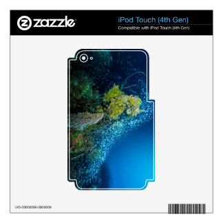 Great Barrier Reef Tropical Fish Coral Sea Decal For iPod Touch 4G