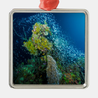 Great Barrier Reef Tropical Fish Coral Sea Metal Ornament