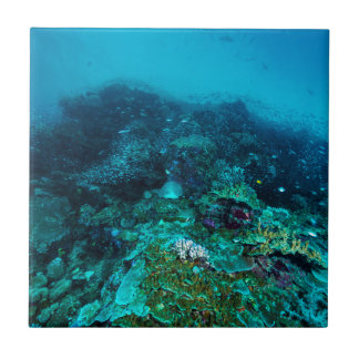 Great Barrier Reef Tropical Fish Coral Sea Tile