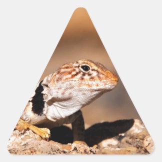 Great Basin Collared Lizard - Burr Trail - Utah Triangle Sticker
