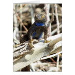 Great Basin Fence Lizard at Joshua Tree Photo Card