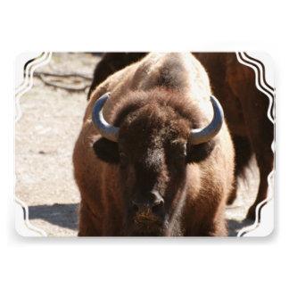 Great Bison Personalized Invitation