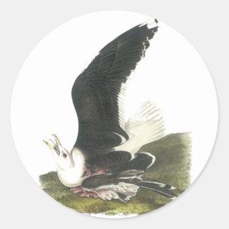 Great Black-backed Gull, John Audubon Classic Round Sticker