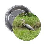 Great Blue Heron 2 Inch Round Button