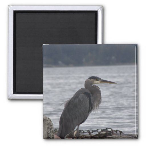 Great Blue Heron 2 Inch Square Magnet