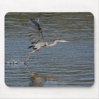 Great Blue Heron 3 Mousepad