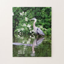 Great Blue Heron and Alligator Puzzle