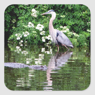 Great Blue Heron and Alligator Stickers