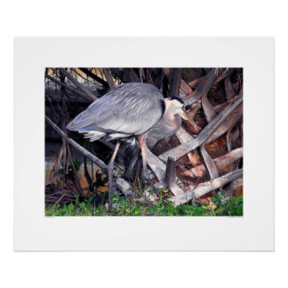 Great Blue Heron and Palm Tree Poster