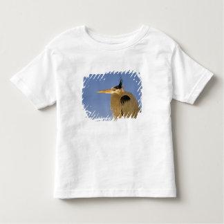 Great Blue Heron, Ardea herodias, adult, Toddler T-shirt