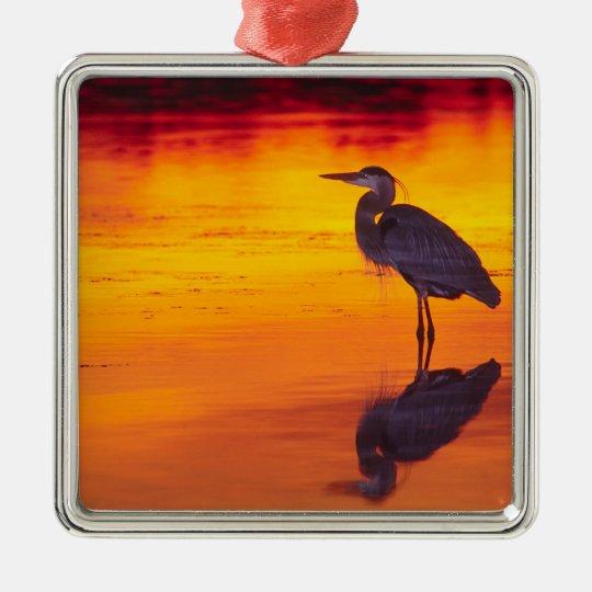 Great Blue Heron (Ardea herodias) fishing at Metal Ornament