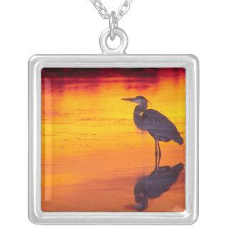 Great Blue Heron (Ardea herodias) fishing at Square Pendant Necklace