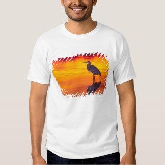 Great Blue Heron (Ardea herodias) fishing at T-Shirt