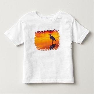 Great Blue Heron (Ardea herodias) fishing at Toddler T-shirt