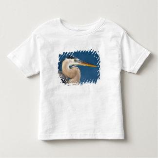Great Blue Heron (Ardea herodias). USA, Florida, Toddler T-shirt