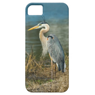 Great Blue Heron at the Lake iPhone SE/5/5s Case