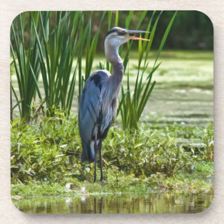 Great Blue Heron at the Pond Cork Coasters