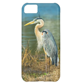 Great Blue Heron at the Pond iPhone 5C Case
