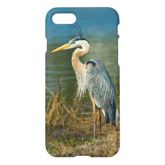 Great Blue Heron at the Pond iPhone 8/7 Case