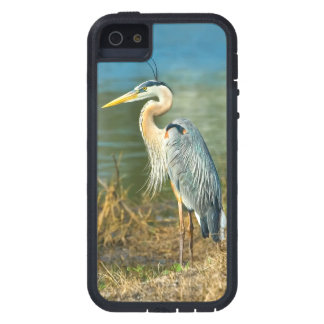 Great Blue Heron at the Pond iPhone SE/5/5s Case