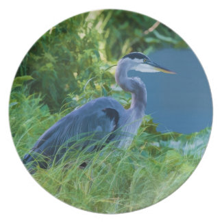 Great Blue Heron at the Pond Plate