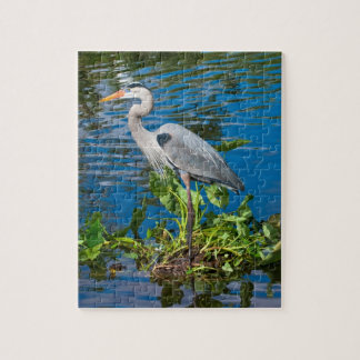 Great Blue Heron at the Pond Puzzle