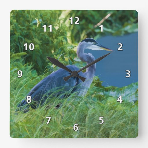 Great Blue Heron at the Pond Square Wall Clocks