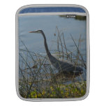 Great Blue Heron at Viera Wetlands Sleeve For iPads