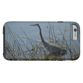 Great Blue Heron at Viera Wetlands Tough iPhone 6 Case