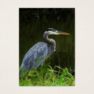 Great Blue Heron ATC Photo Card